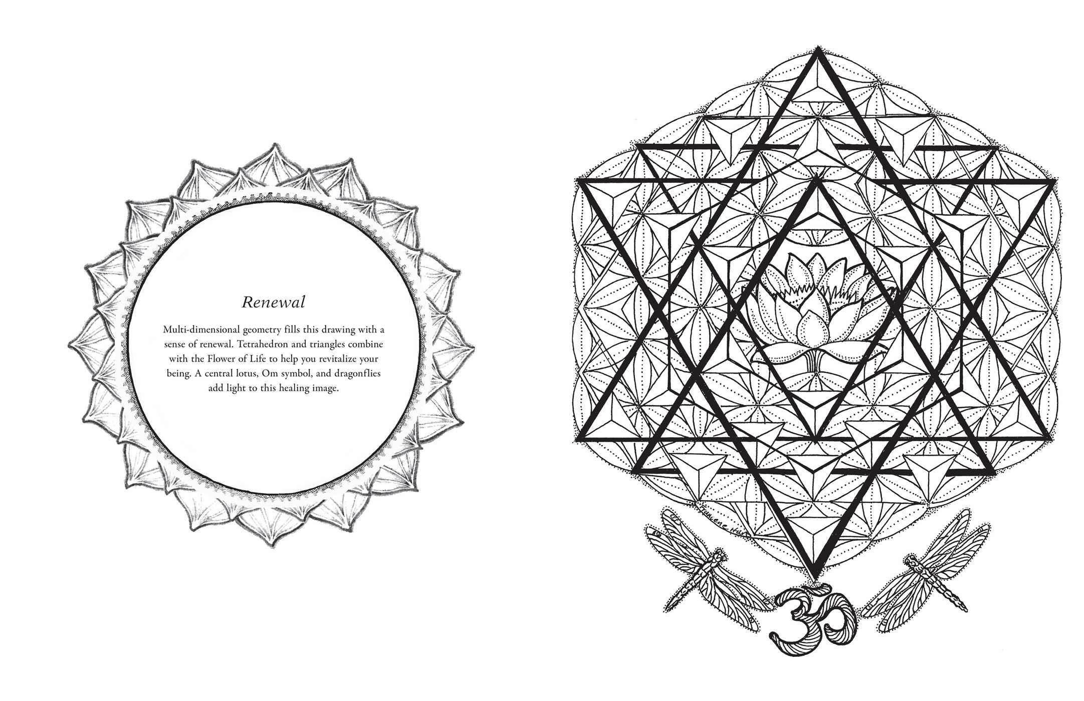 Sacred Geometry Coloring Book | Book by Francene Hart ...