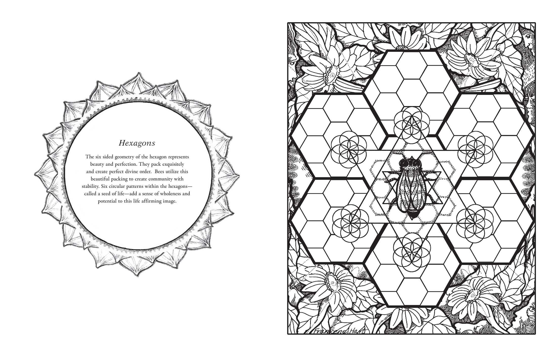 Sacred Geometry Coloring Book | Book by Francene Hart | Official