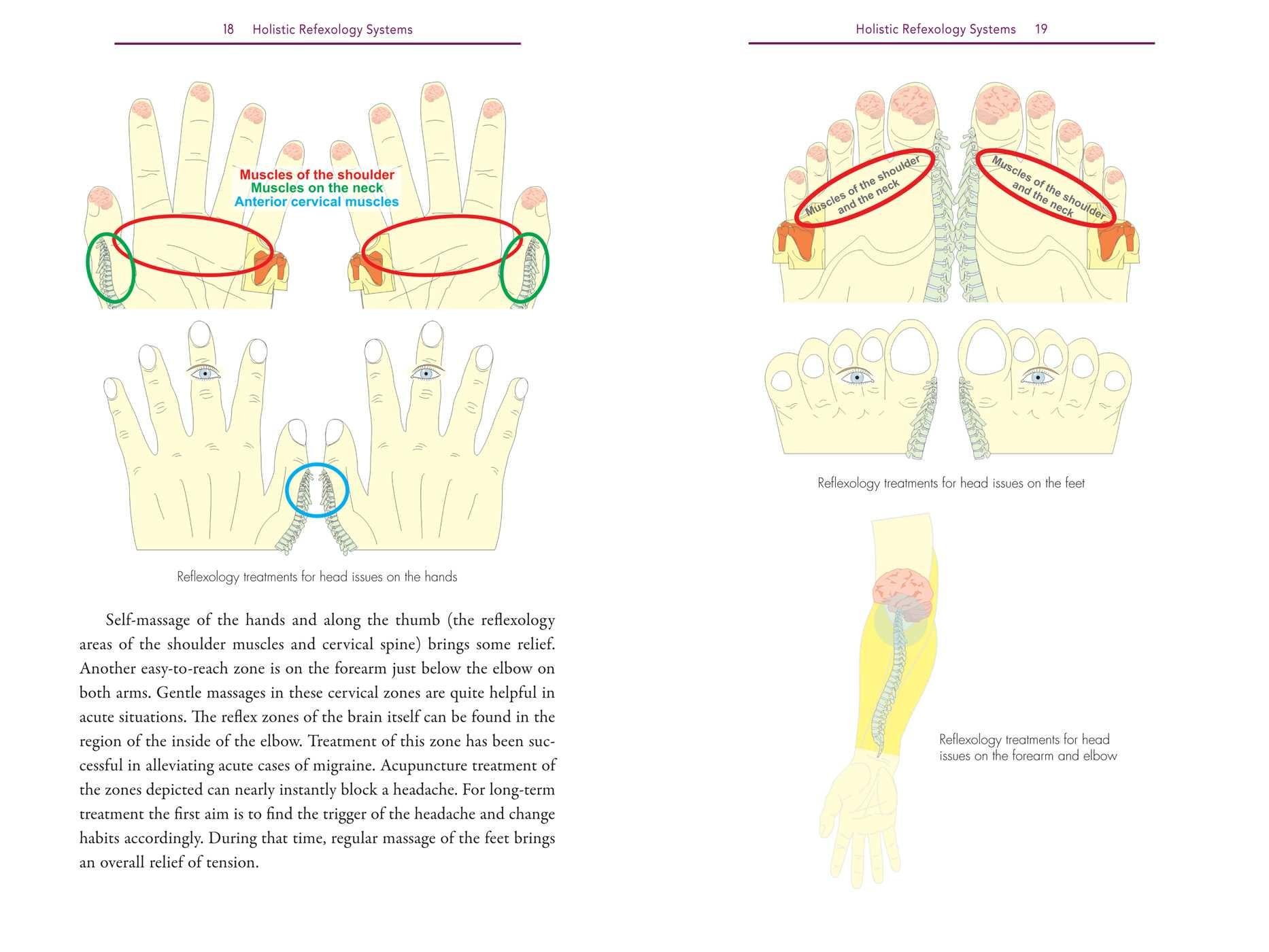 Holistic reflexology 9781620557532.in04