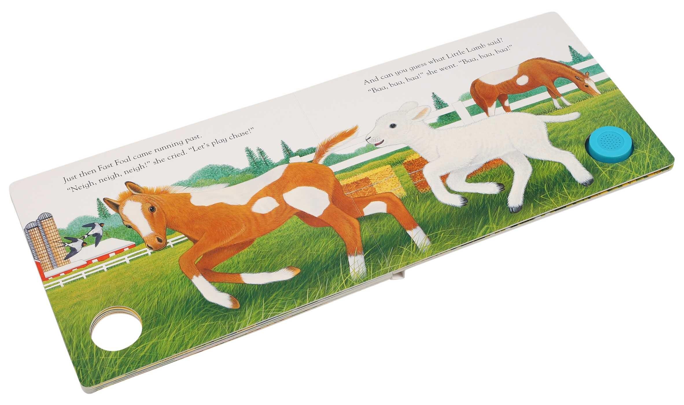 Little lambs new friends 9781626869400.in01