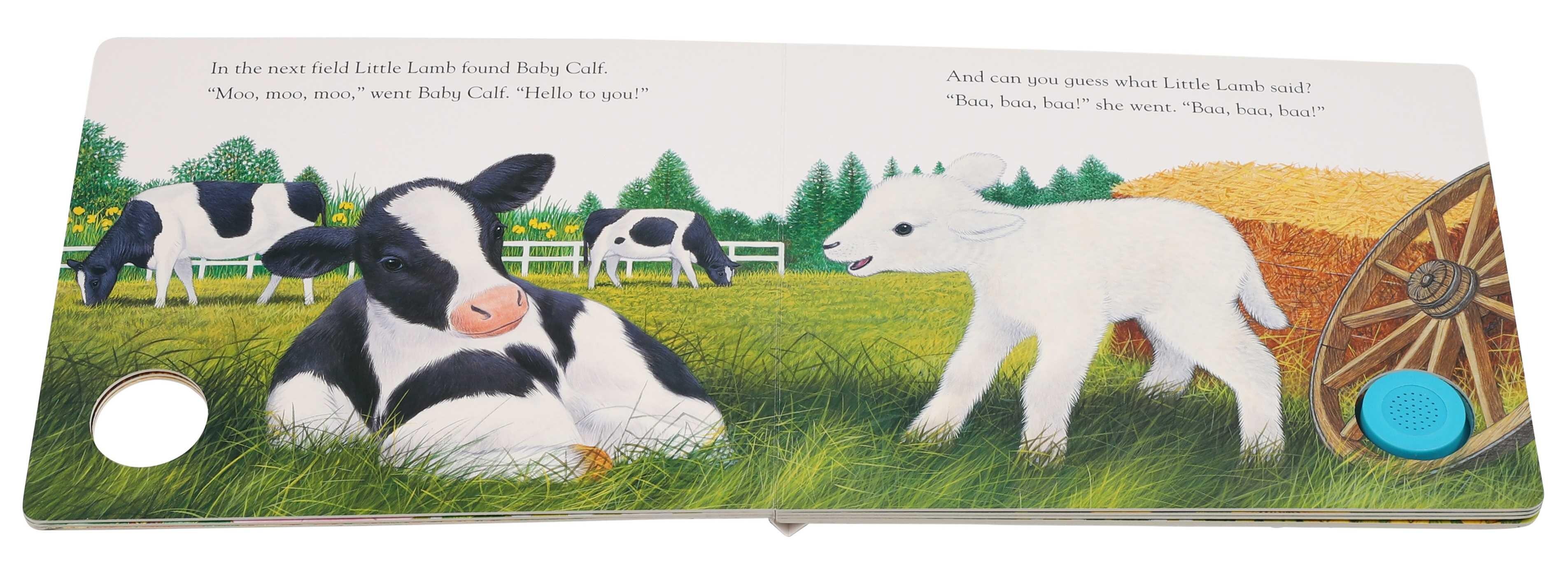Little lambs new friends 9781626869400.in02