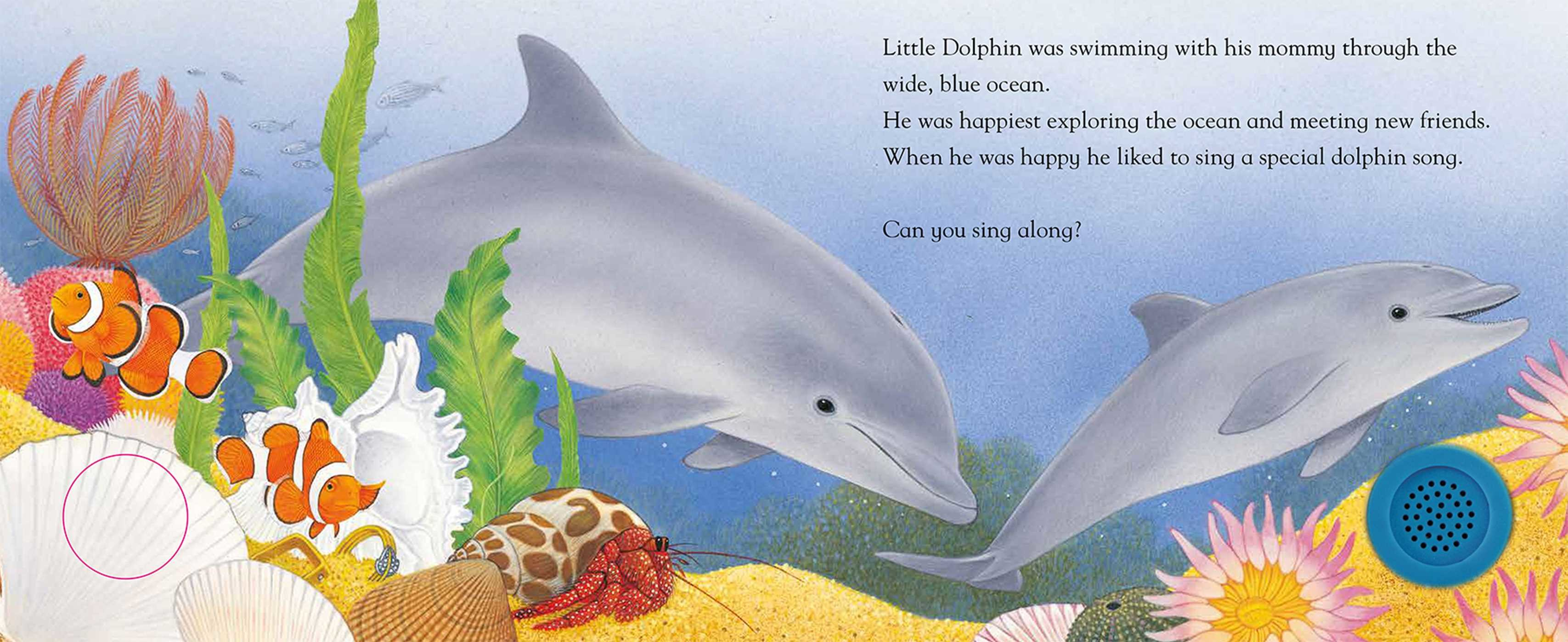 Little dolphin sings a song 9781626869417.in01