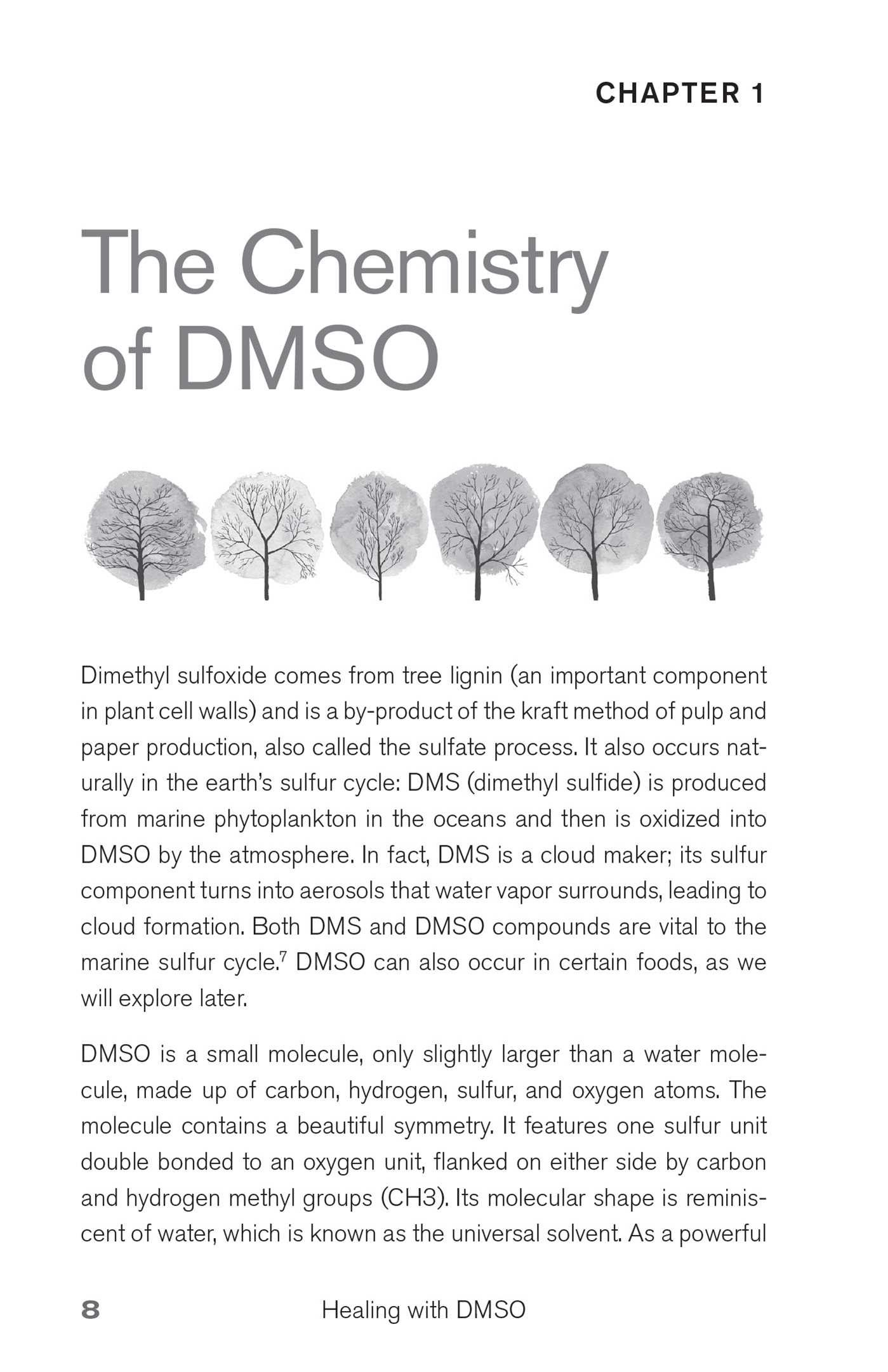 Healing with DMSO | Book by Amandha Dawn Vollmer | Official