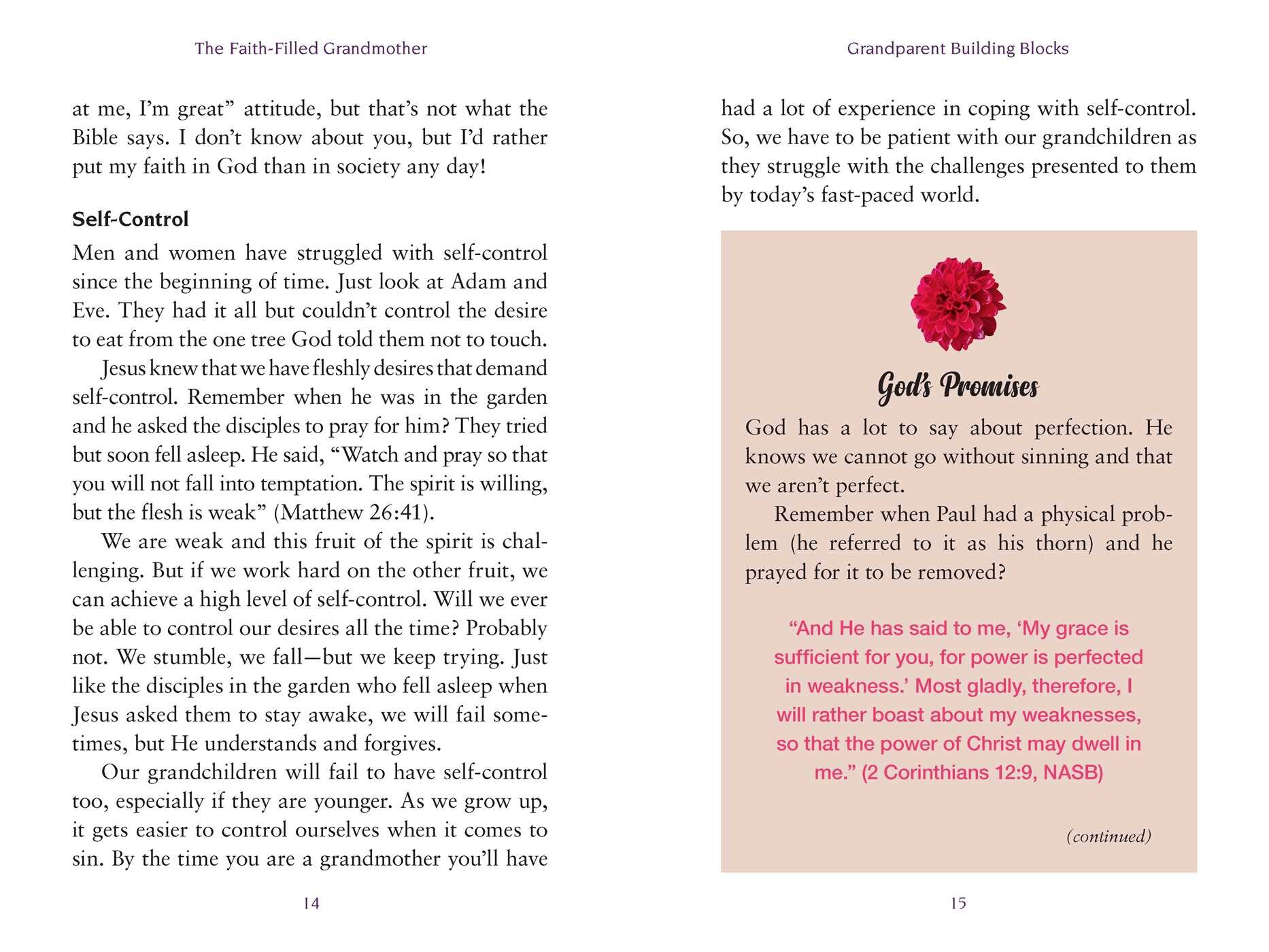 The Faith-Filled Grandmother | Book by Teresa Kindred