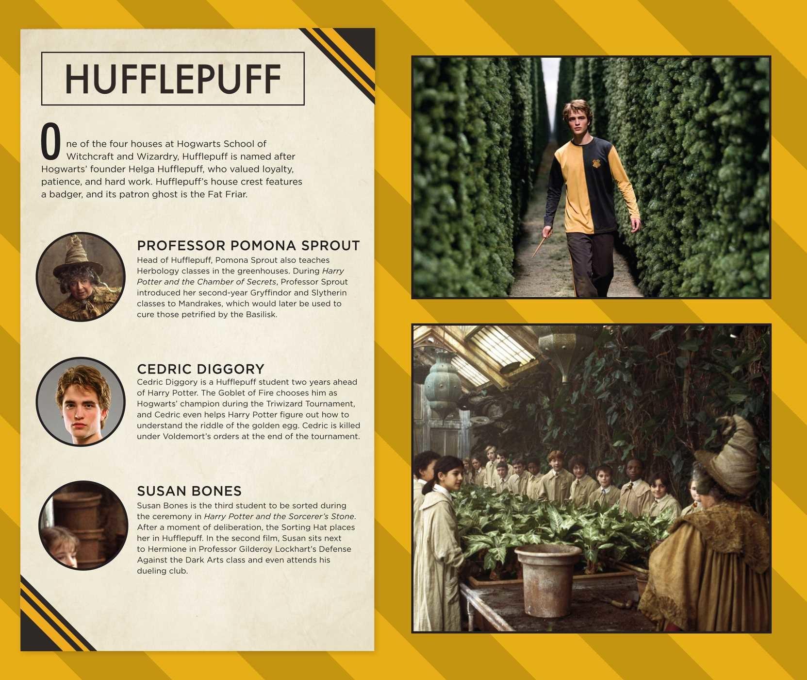 Harry Potter Book Art Hogwarts Harry Potter: Hufflepu...