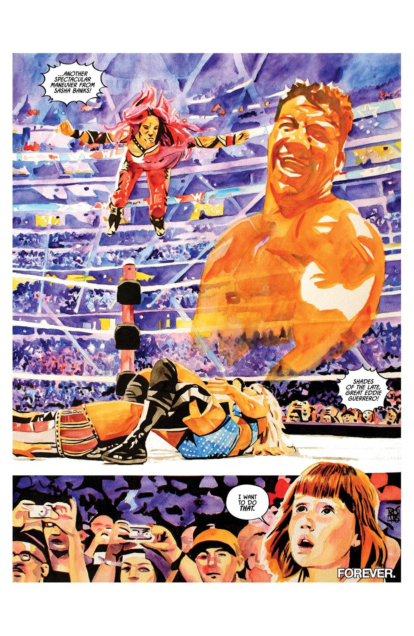 Wwe then now forever vol 1 9781684151288.in04