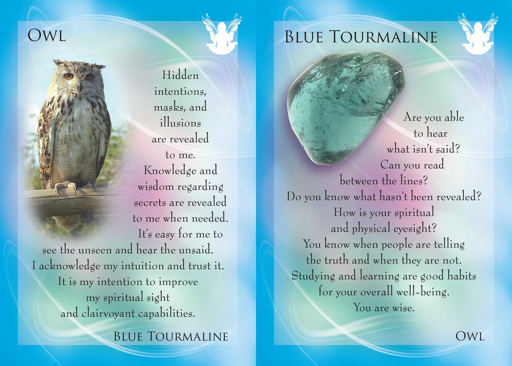 The animal allies and gemstone guardians cards 9781844097418.in03