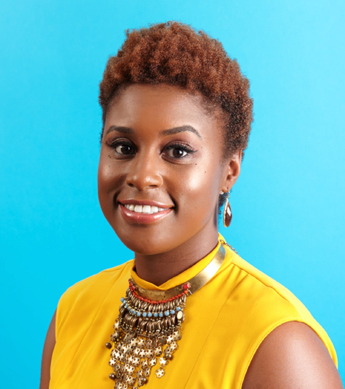 The Misadventures Of Awkward Black Girl  Book By Issa Rae