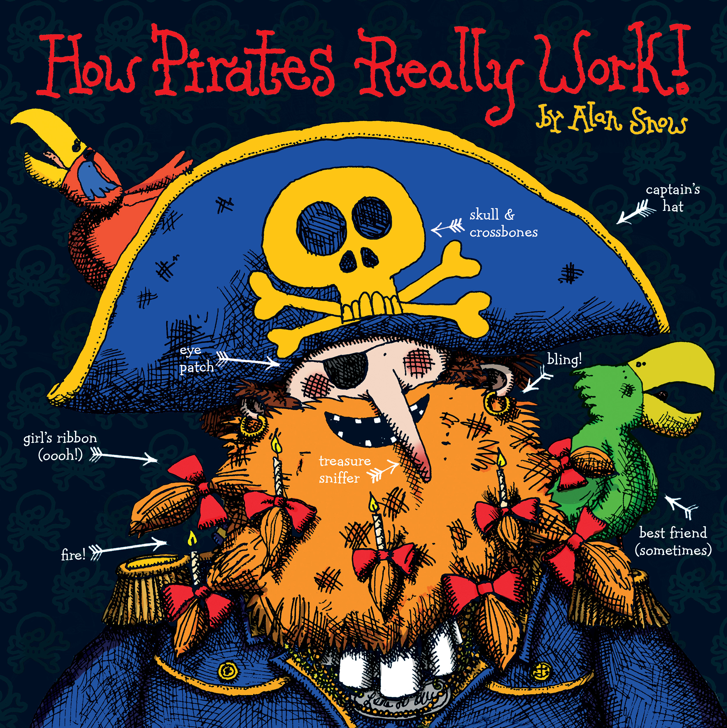 How pirates really work 9780857079565 hr