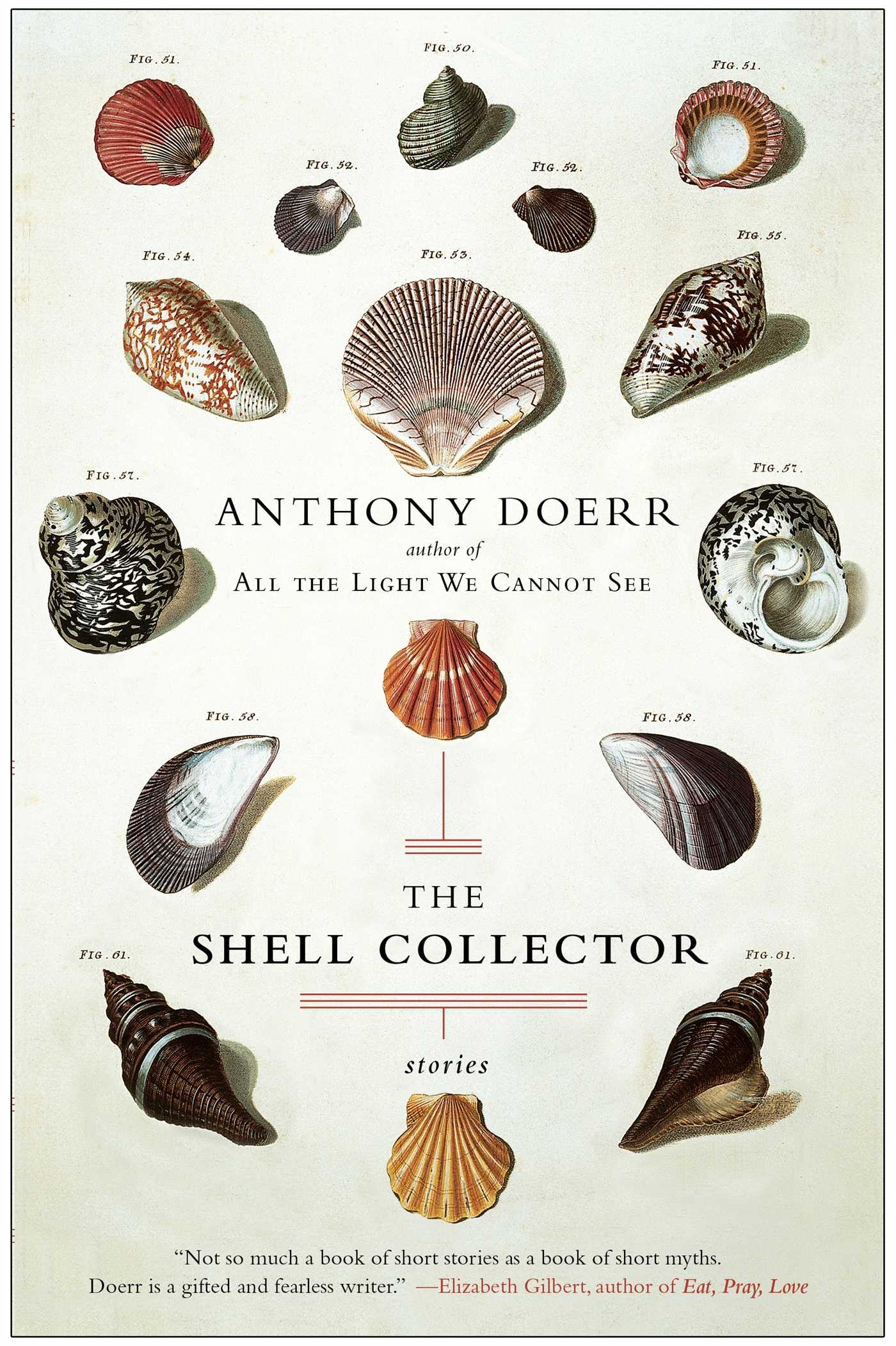 Image result for the shell collector cover