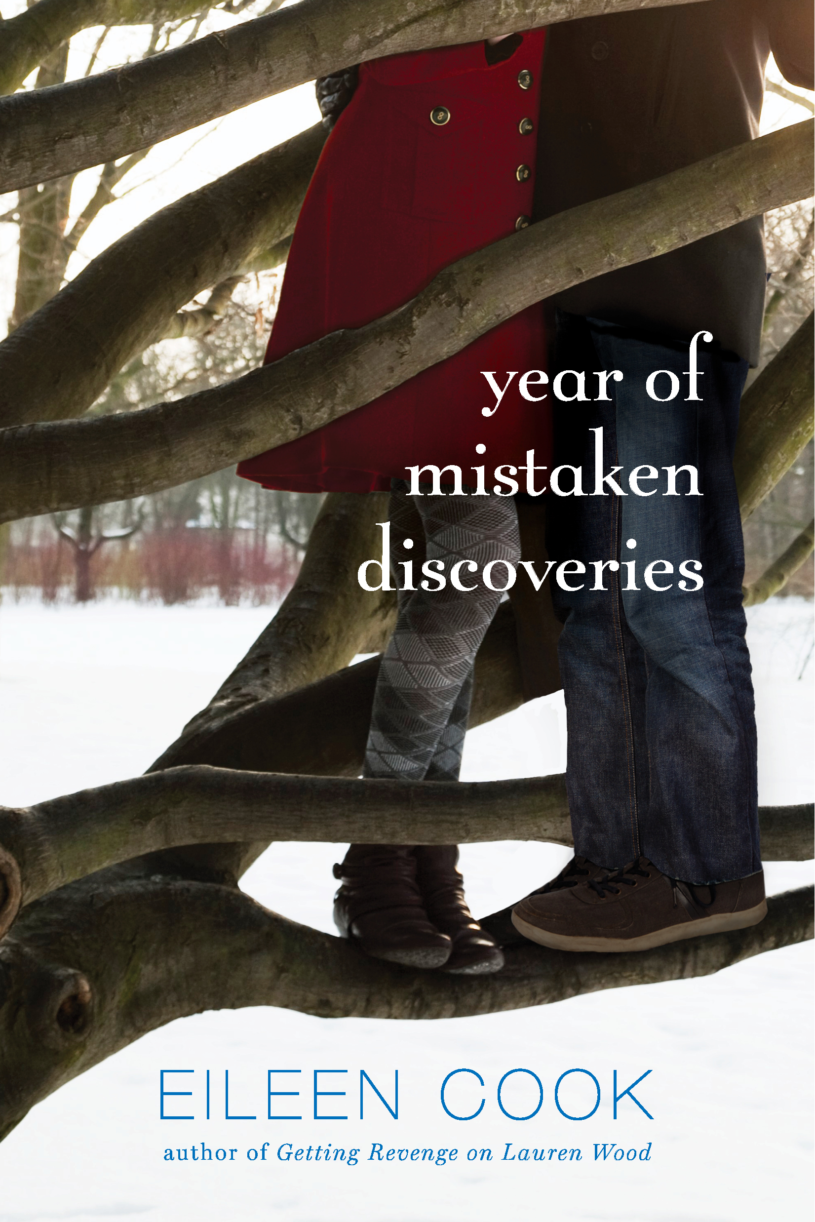 Year of mistaken discoveries 9781442440227 hr