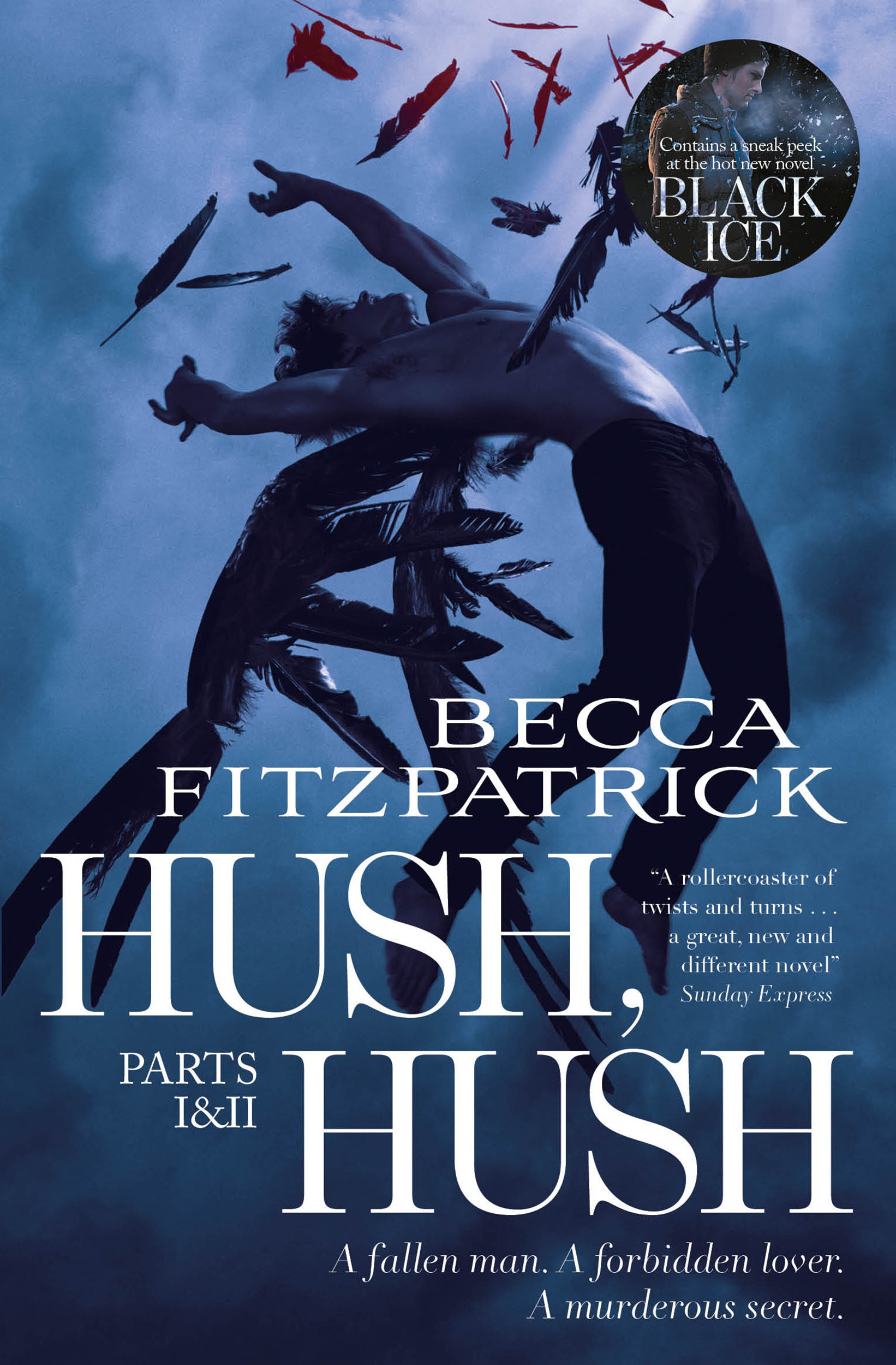 Hush Hush Parts 1 2 Book By Becca Fitzpatrick Official