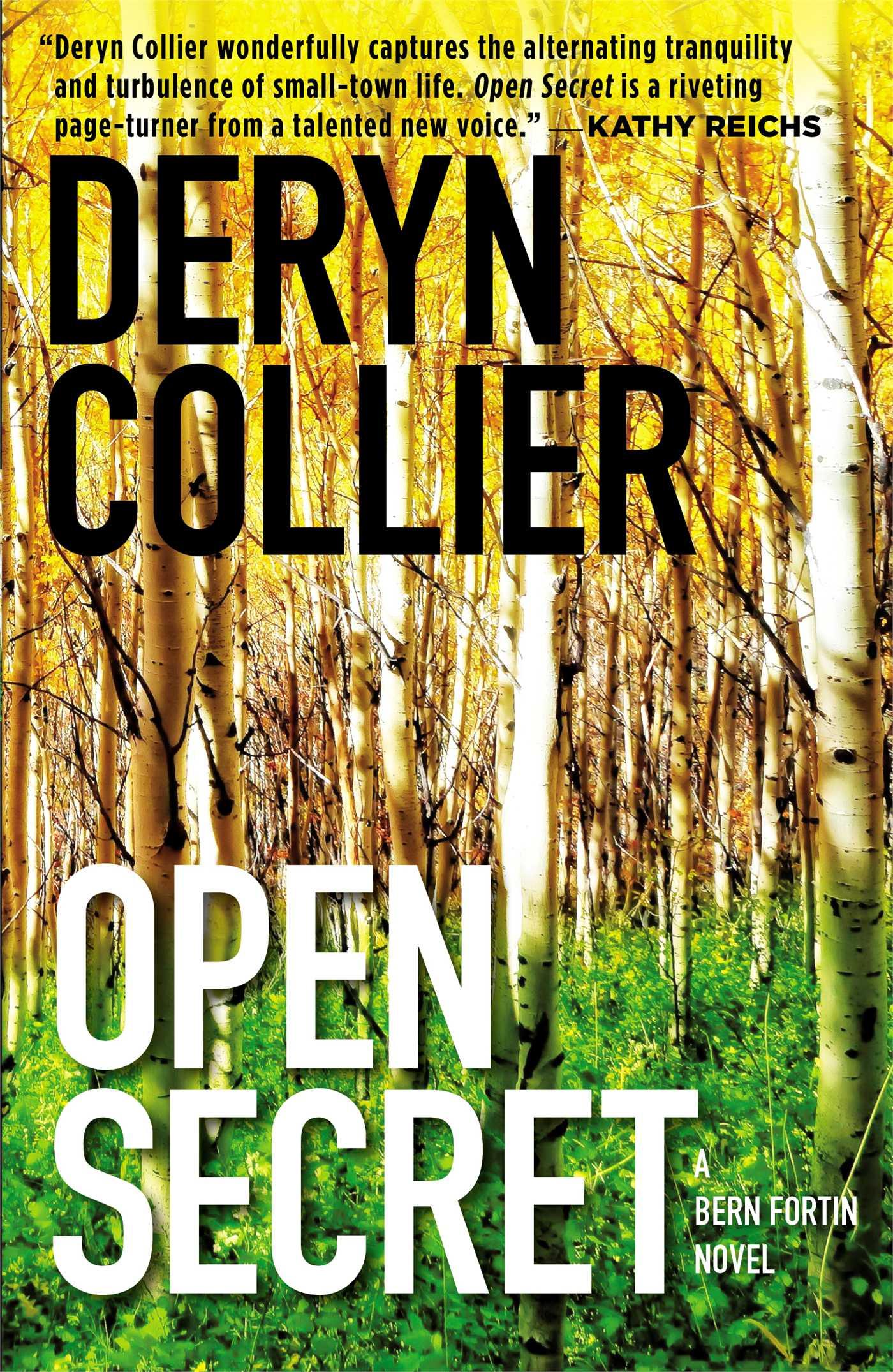 Open secret 9781476716800 hr